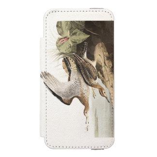 Lavandera de Bartram de la placa 303 de Audubon Funda Billetera Para iPhone 5 Watson