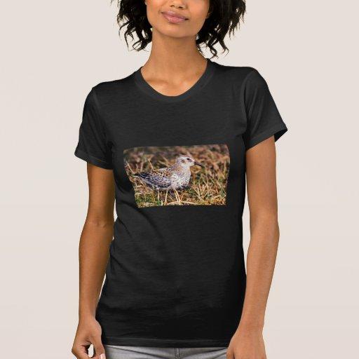 Lavandera de la roca camiseta