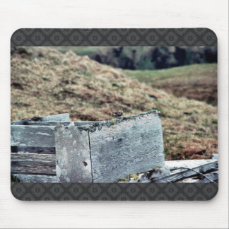 Lavandera de la roca en ruinas de WWII Tapete De Raton