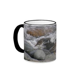 Lavandera de la roca (ptilocnemis del Calidris) Taza De Dos Colores