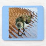 Lavandera en la playa tapetes de ratón