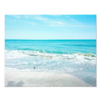 Lavandera tropical de las olas oceánicas de la fotografías