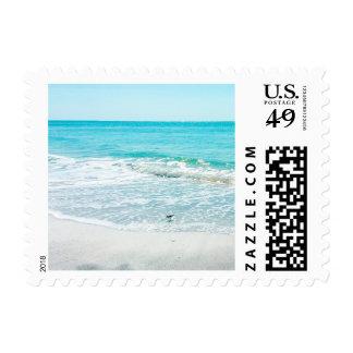 Lavandera tropical de las olas oceánicas de la sellos postales