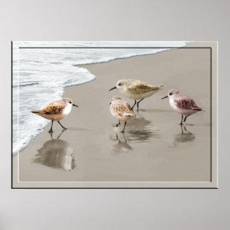 Lavanderas en la línea de la playa póster