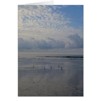 Lavanderas en la tarjeta de nota de la playa de la