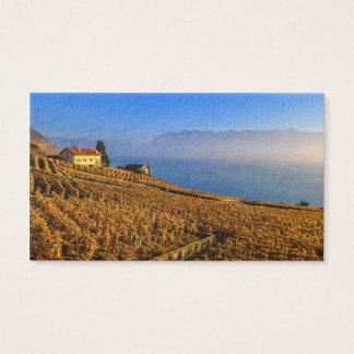 Lavaux region, Vaud, Switzerland Business Card