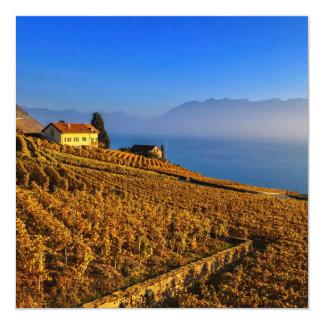 Lavaux region, Vaud, Switzerland Card
