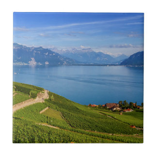 Lavaux region, Vaud, Switzerland Tile