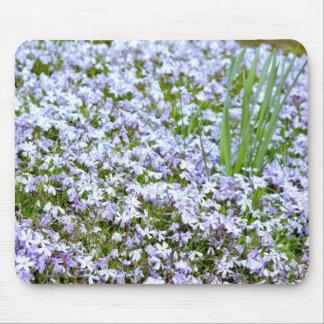 lavendar flowers mousepad