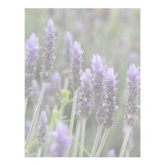 Lavendar púrpura plantillas de membrete
