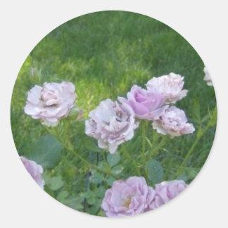 Lavendar Rose Sticker