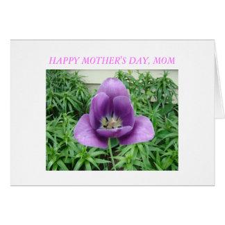 Lavendar Tulip, HAPPY MOTHER'S DAY, MOM Card