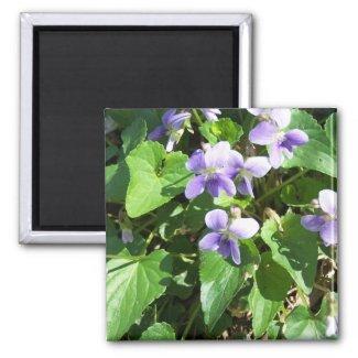 lavendar weeds magnet