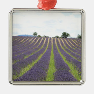 Lavendel Field in the Provence Christmas Tree Ornaments