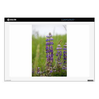 Lavender Alaskan Lupines Laptop Skins