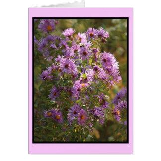 Lavender Aster Notecard