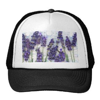 lavender background trucker hat