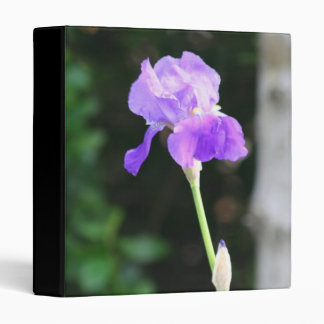 Lavender Bearded Iris binder