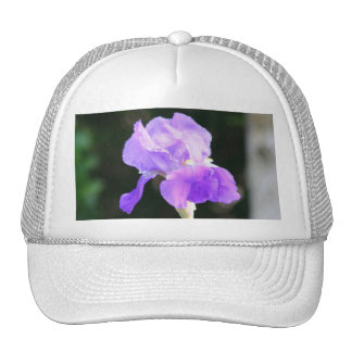 Lavender Bearded Iris cap Trucker Hat