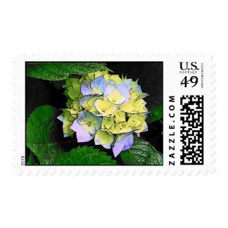 Lavender Blue Hydrangea Postage Stamp