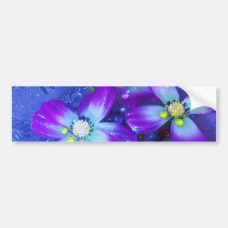 Lavender blues bumper sticker