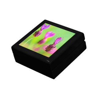 Lavender Bud Painting Gift Box