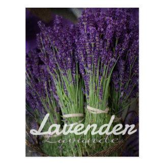 Lavender Bunch Postcard