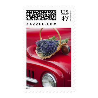 Lavender bunches rest on old farm pickup truck postage stamp