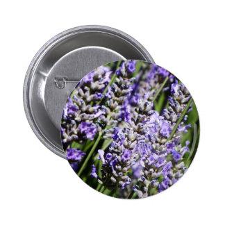 Lavender Pins