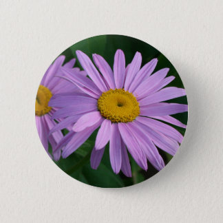 Lavender Colored Painted Daisies Pinback Button