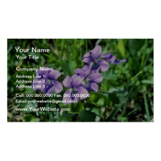 Lavender Common Blue Violet (Viola Papilionacea) f Double-Sided Standard Business Cards (Pack Of 100)
