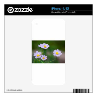Lavender Cosmos Blossoms iPhone 4S Skin