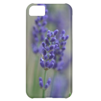 Lavender Cover For iPhone 5C