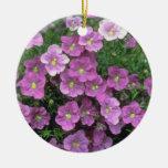 Lavender Cupflower (Nierembergia Hippomanica) flow Ornament