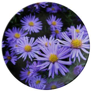 Lavender Daisies Porcelain Plate