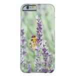 Lavender Daze iPhone 6 Case