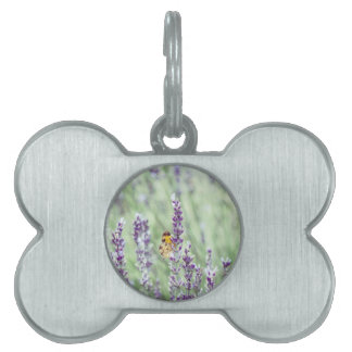 Lavender Daze Pet Name Tags