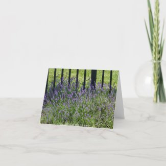 Lavender Delight Thank You Card