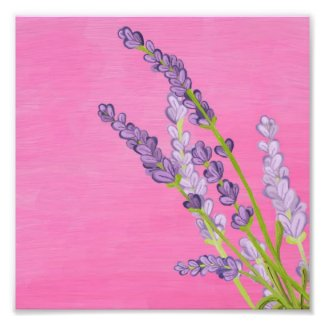 Lavender Digital Painting Photo Print