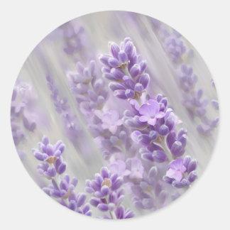 Lavender dreams. classic round sticker