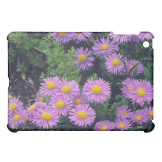 Lavender Dunkle Schone Aster, (Aster Alpinus) flow Cover For The iPad Mini