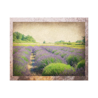Lavender Farm - Distressed  Wrapped Canvas