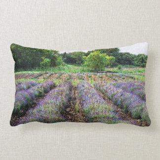 lavender farm field landscape throw pillow