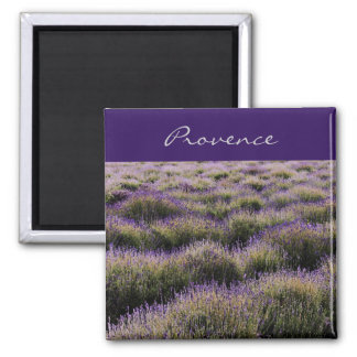 lavender farm field - Provence Magnet