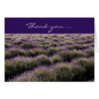 lavender farmfield photography card