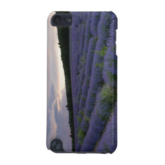 Lavender field at sunset iPod touch 5G cover