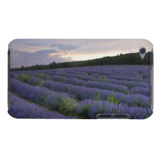 Lavender field at sunset iPod touch Case-Mate case
