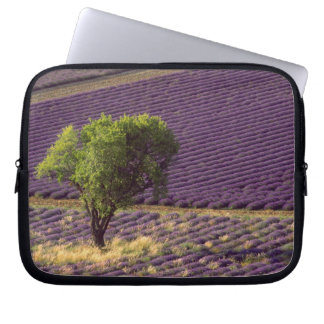 Lavender field in High Provence, France Laptop Sleeve