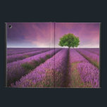 "Lavender Field Landscape Summer Sunset Cover For iPad Air<br><div class=""desc"">Beautiful image of lavender field Summer sunset landscape with single tree on horizon contrasting colors &#169; and &#174; Bigstock&#174; - All Rights Reserved.</div>"