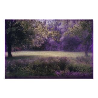 Lavender Field of Dreams Art Photo